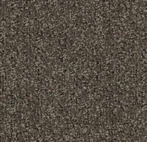 Coral Classic 4764 taupe